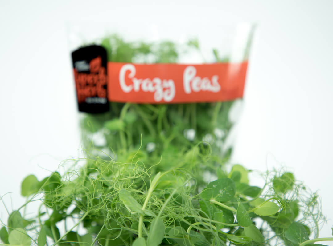superb herb